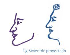 menton proyectado_diccionario