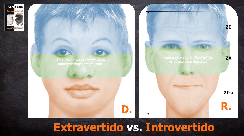 Extravertido-Introvertido portada